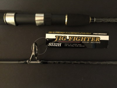 Jigging rod - Fighter S532H (300 gr)