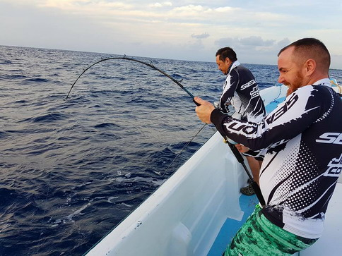 Peche SUD - Saltwater fishing gear & tackles